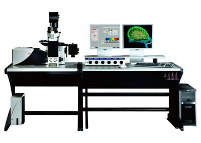 Leica Confocal SP5 Blue