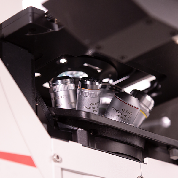 August 3, 2018   Addition of light-sheet microscopy brings exciting new capabilities to the ALMS