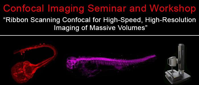 September 17, 2019 | Confocal imaging seminar and workshop